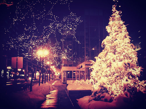 christmas tumblr pictures hey there christmas lovers i am a winter