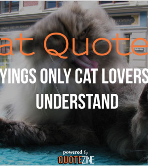 Cat Quotes: 25 Sayings Only Cat Lovers will Understand:Quotes About Cats Tumblr